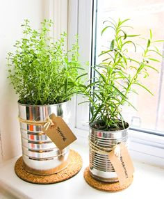 conserves-herbes-aromatiques Plus