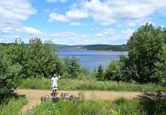 Views from Lakeside Way cycling route at Kielder Water, Northumberland, UK