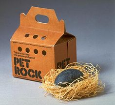 Pet rock!  :)  My brother got some kind of rock every year at Christmas.