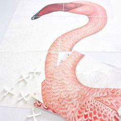 Combo Design is officieel dealer van IXXI ✓Greater Flamingo IXXI ✓ Verschillende varianten verkrijgbaar ✓ Gratis verzending (NL) Greater Flamingo, Affordable Wall Art, Tropical Party, Design System, Modern Wall Decor, Cool Walls, Rainbow Colors, Amazing Photography, The Help