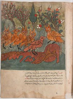"""""""The Crow Spy Talks to the King of the Owls and His Ministers"""", Folio from a Kalila wa Dimna Manuscript"""