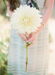 20 Stunning (and Budget Friendly) Single Stem Bouquets | Cascading ...