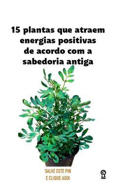 Eco Garden, Plantar, Useful Life Hacks, Feng Shui, Gardening Tips, Garden Design, Prayers, Herbalism, Album