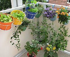 176 Best Garden Gardening Ideas Images On Pinterest Potager