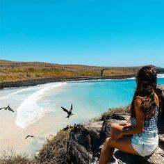#Playa #PuertoChino - #IslaSanCristobal #Galapagos  Vive tu mejor #aventura con #Rutaviva#TravelTheWorld  Encuentra cientos de DESTINOS y HOTELES en  www.rutaviva.com _____________________________________________ Photo:  @lilihutravel #AmoEcuador #ViajaPrimeroEcuador#FeelAgainInEcuador  #Ecuador#FamiliaViajeraEcuador  #allyouneedisecuador #travelblogger #mochileros #natgeotravel#SoClose #LikeNoWhereElse #amor  #AllInOnePlace#instatravel #TraveltheWorld #primerolacomunidad#World_Shots #live…