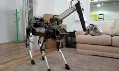 A fun-sized version of Spot is the most domesticated Boston Dynamics robot we've seen