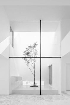 The brightness of this image, helps us focus on the central parts of the composition. Being the tree and lines on the window.