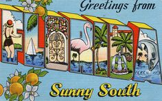 Greetings from Florida, Sunny South - Large Letter Postcard | Flickr - Photo Sharing!