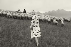 Meadows in blossom, fields full of wheat, cows, sheep.Original patterns inspired by Slovak nature in its pure beauty. Check out Puojd fashion here: www. Cow Skin, Pure Beauty, Sheep, Beautiful People, Graphic Design, Pure Products, Cows, Celebrities, Fields