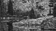National Geographic Live! - Peter Essick: Ansel Adams Wilderness Revisited