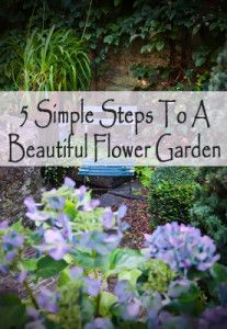 5 Simple steps to a beautiful flower garden