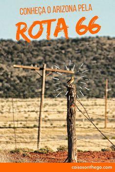 Conheça o Arizona pela Rota 66: o estado está repleto de rotas cênicas que levam você a vários monumentos, belezas naturais, lindas paisagens e imensos desertos