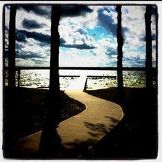 Kingsley Lake, Florida...my little peace of heaven.
