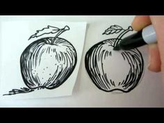 How To Draw An Apple - Draw Apples - Draw Fruit