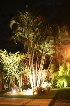 45 mejores imágenes de Iluminacion de exteriores  1804cd191ac
