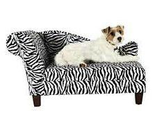 Zebra Dog Sofa