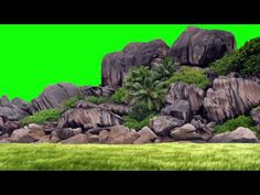 Please visit our website for Green Background Video, Green Screen Video Backgrounds, Beach Background, New Backgrounds, Blurred Background, Golden Background, Green Screen Photo, Free Green Screen, Wedding Background Images