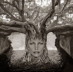Face Off~Thomas Barbey~♛