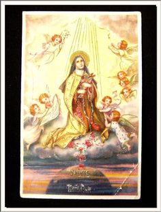 """✨ """"If God should desire beautiful thoughts and sublime sentiments, He has His angels!... Furthermore, He could have created human beings already perfect with none of the weakness of our nature.""""  St. Therese, the Little Flower   ✨"""