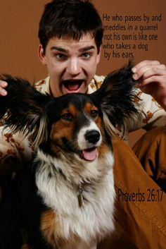 Proverbs 26:17Like someone grabbing hold of a dog's ears Is the one passing by who becomes furious about a quarrel that is not his.