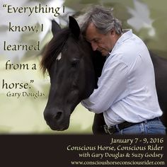 """Would like to know what Gary Douglas learned from horses? Gary does not  facilitate """"Conscious Horse, Conscious Rider"""" Classes every year ensure you don't miss out!  Conscious Horse, Conscious Rider  January 7 to 9, 2016"""