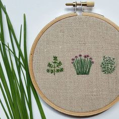WEBSTA @ forestchorusstudio - Basil, chives, and thyme.  Do you enjoy gardening? What do you like to plant? This little hoop makes me miss having an herb garden so much!