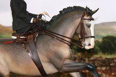 Four Corners Tack , model horse side saddle