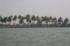 Kerala Backwaters..kumarakom to Alleppey on a boat!