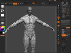 Sculpting The Male Figure Zbrush Tutorial, Zbrush: Sculpting The Male Figur, Sculpting The Head in ZBrush, Sculpting The Head ZBrush Tutorial, sculpting in ZBrush, ZBrush sculpting video Tutorial, sculpting in ZBrush with Claudio Setti, ZBrush sculpt, A Basic Introduction to Working with & sculpt ZBrush, Zbrush Tutorial, ZBrush Training Video, Best Zbrush Tutorials and Training Videos for Beginners, Pixologic ZBrush, ZBrush Free Tutorials, ZBrush tutorials, Beginner to Advanced Video ...