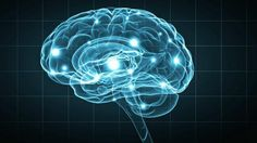 Segundo pesquisa, pessoas vêm recorrendo à internet para guardar novas informações em vez de usar seus próprios cérebros.