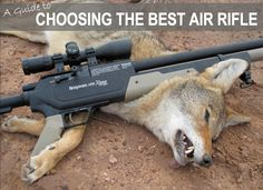 Using a well-made quality air rifle can be an awesome experience. There is no better time than today to find which air rifle is the best. Models these days