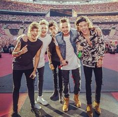 One Direction Announce 'Where We Are' Concert Movie: 5 Things We MUST Know!