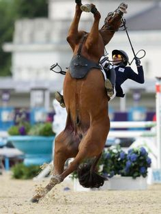 for everyone who says it's easy...you just sit up there on the horse...