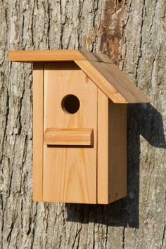 This bird house is made of Cedar and has a unique design. The depth of the box, the floor size and the hole diameter are optimized for the White-breasted Nuthatch to nest in better condition. A light coat of selected natural linseed oil is applied on the product, to consolidate the