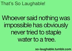 Whoever said nothing was impossible has obviously never tried to staple water to a tree
