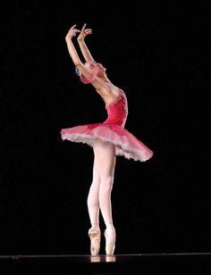 Svetlana Zakharova with the Mikhailovsky Ballet - Ballet, балет, Ballett, Ballerina, Балерина, Ballarina, Dancer, Dance, Danza, Danse, Dansa, Танцуйте, Dancing