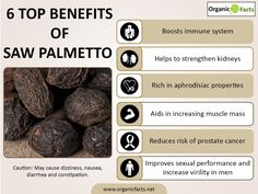 Immune System Health: This is certainly not the most popular use of saw  palmetto extract or supplements, but they have been known to generally  boost the ...