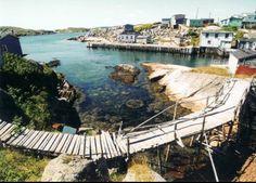 Petites Newfoundland