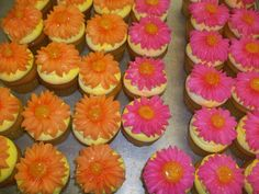 Calumet Bakery  Cupcakes with buttercream daisies