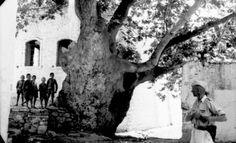 Στο Spiegel on Line δημοσιεύτηκε προ ημερών το πορτρέτο του Γιάννη Συγγελάκη, επιζήσαντα του φοβερού Ολοκαυτώματος της Βιάννου (το 2ο μεγαλύτερο στη χώρα), που στην τρυφερή ηλικία των 7 ετών έχασε τον πατέρα του Αριστομένη, τα αδέλφια του πατέρα του Παύλο, Ιωάννη και Ματθαίο και τον παππού του Νικόλαο, δηλαδή 5 άτομα από το ίδιο …