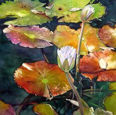 """Watercolor Painting : """"Lily Pads"""" (Original art by Judy Nunno) Contemporary Stairs, Contemporary Wallpaper, Rustic Contemporary, Contemporary Landscape, Contemporary Paintings, Contemporary Office, Contemporary Building, Contemporary Apartment, Contemporary Chandelier"""