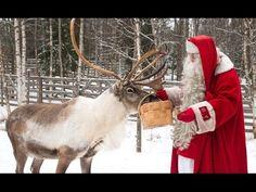 Winter in Rovaniemi im Lappland