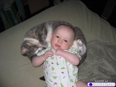 baby and kitty 9 Babies and kitties? The ultimate cute (16 photos)