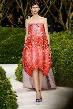 Christian Dior: Runway - Paris Fashion Week Haute-Couture 2013 by carter flynn