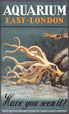 Aquarium East-London. Have You Seen It? Published jointly by the East London Association & the S.A. Railways & Harbours Administration. Vintage travel poster for the East London Aquarium in East London, South Africa, 1939. The poster shows an octopus near rocks and seaweed. Prints from $15.