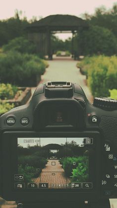 #Life is like a camera... Just focus on what's important and capture the good times. #daily #wallpaper #photography