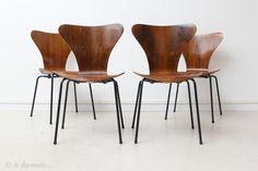 Rare set de quatre chaises Série 7 par Arne Jacobsen en palissandre de Rio, 1970