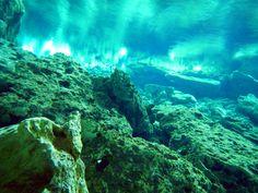 Underwater view of the Mayan Underworld of Dos Ojos.   #tourguidekay #tourguide #privatetour #playadelcarmen #cancun #tulum #coba #chichenitza #cenotes #snorkeling #turtles #ruins #rivieramaya #yucatan #mayanruins #rivieramayaweddings #mexico #traveltips  http://www.privatetourguidekay.com/