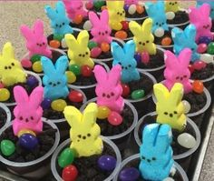 EASTER MAGIC, GAMES, DESSERTS & MORE!