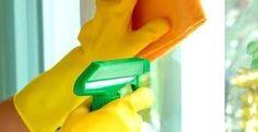 Un nettoyant vitre écologique, très efficace qui laisse une bonne odeur de propre, de plus il éloigne les insectes ! La plupart des produits à vitre sont très nocifs pour la nature, mais aussi pour sa santé. On retrouve souvent de l'ammoniac et plusieurs...